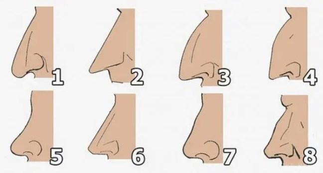 O formato do seu nariz pode revelar muitas coisas a respeito de sua personalidade