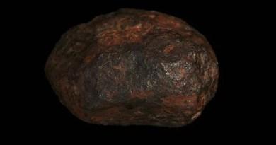 Meteorito de Wedderbum