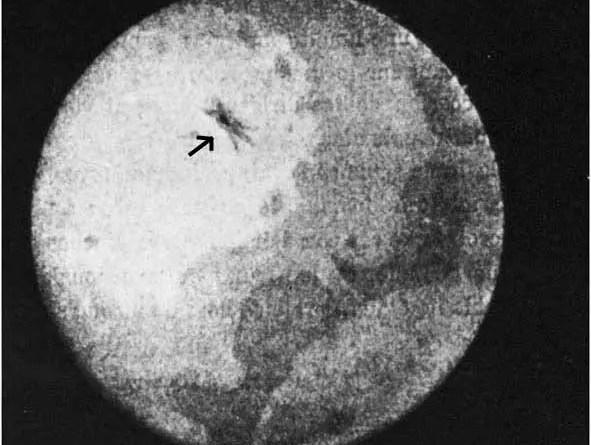 Um cometa maciço quase destruiu a humanidade em 1883