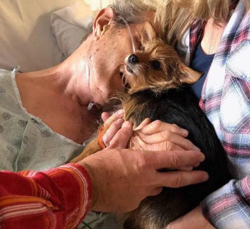 Homem em fase terminal de doença consegue se despedir de seu cachorro no hospital