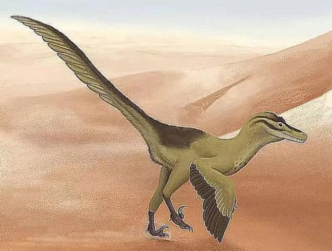 Renderização artística de um Linheraptor.