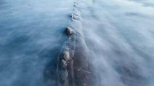 Praia britânica está fechada devido à presença de uma criatura enorme e misteriosa na água