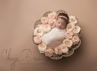 newborn photographer Baltimore, Maryland