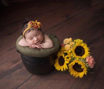 newborn baby with sunflowers