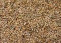ওমেগা ৩ ফ্যাটি অ্যাসিডের সবথেকে বড় ১০ উৎস