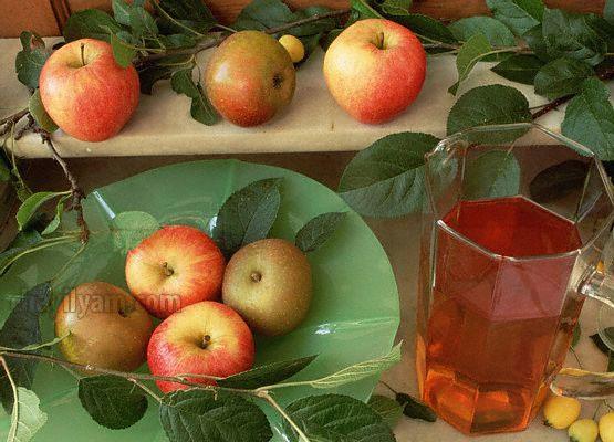 Apple Juice at Bangalore