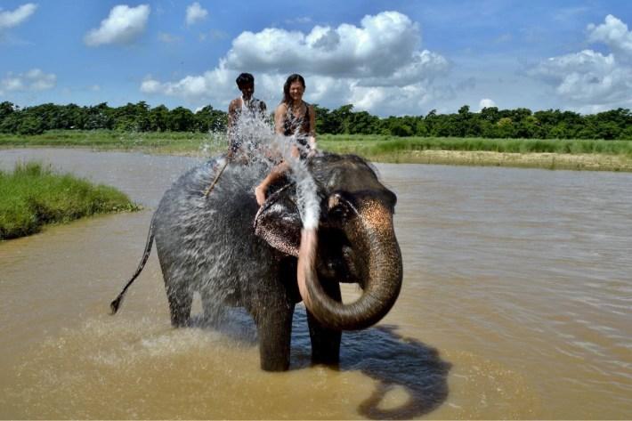 nepal-chitwan-slon
