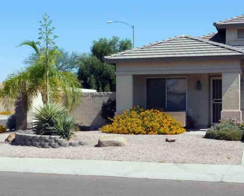 Typical Phoenix home with desert landscaping, but it is super affordable!