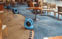 Water Extraction: Flooded Damage Carpet Cleaning Melbourne