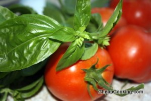 fresh tomatoes for summer marinara sauce
