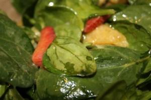 Spinach, Orange and Strawberry Salad