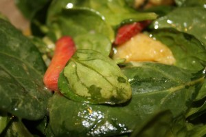 Spinach, Orange and Strawberry Salad