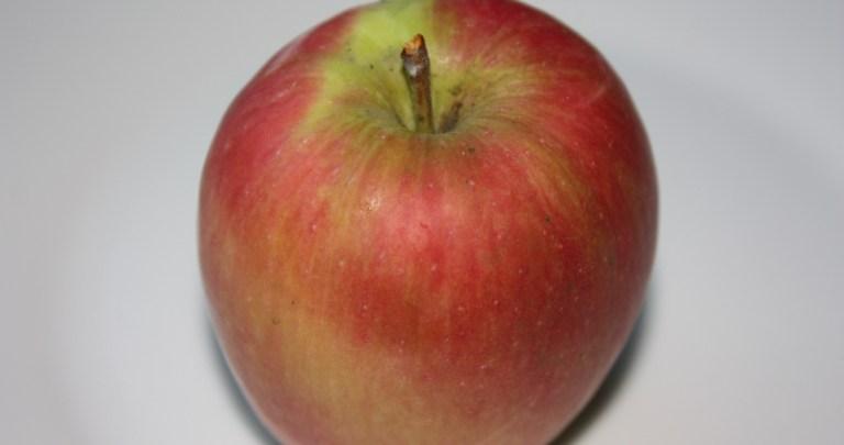 Recipe for Apple Pie