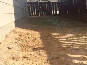 lado-oeste-de-la-casa-antes-de-comenzar-el-trabajo-en-el-jardin