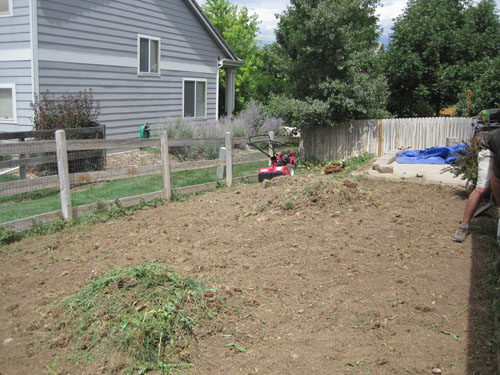 Tilled and semi cleaned up backyard, showing piles of soil and weeds