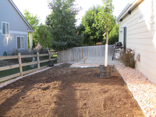 Backyard showing completed rock work and new trees