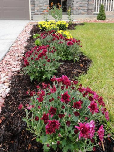 Simple flower bed ideas