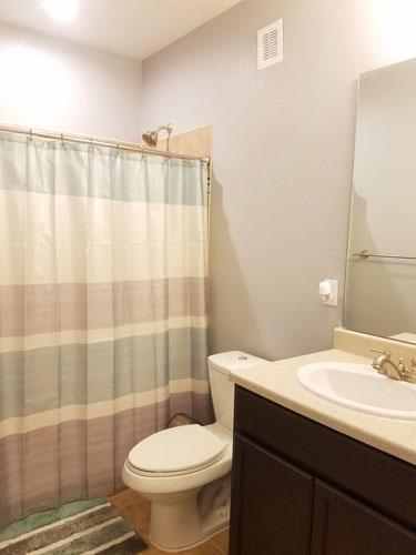 Full basement bathroom