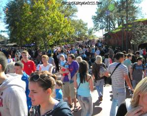 crowds at Christmas, lines at Disney, Christmas crowds, theme park crowds