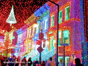 The Osborne Family Spectacle of Dancing Lights - Walt Disney World, picture of The Osborne Family Spectacle of Dancing Lights, photo of The Osborne lights, christmas lights, Disney lights