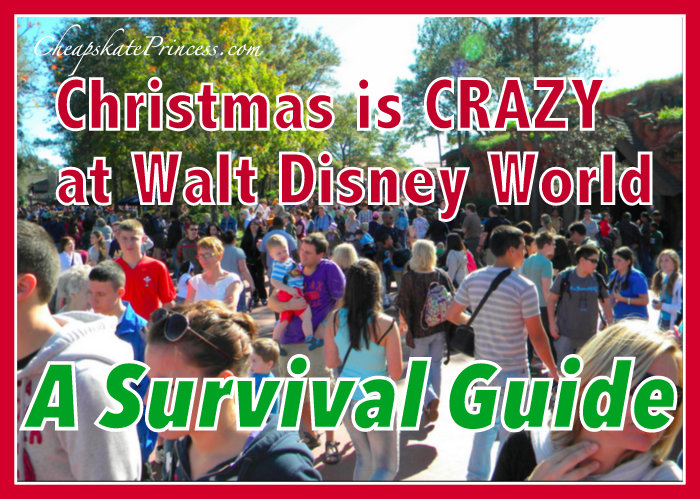 Survival guide for Christmas at Disney World