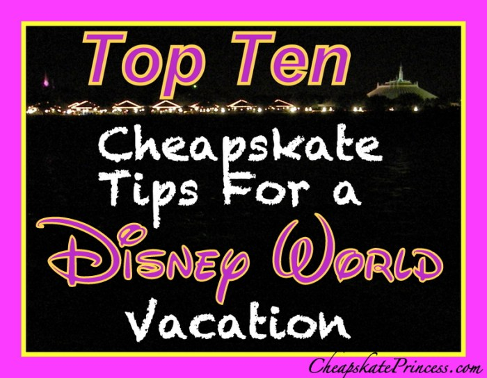 Top Ten Disney World List