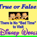 "1st Trip to Disney: Is There No ""Bad Time"" to Visit Walt Disney World?"