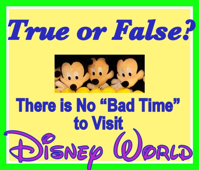 Bad Time to visit Disney World