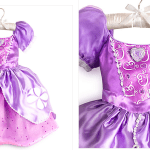 Can You Afford Those Adorable Disney Princess Costumes at Walt Disney World?