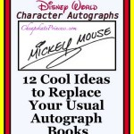 12 Totally Cool Ideas to Replace Your Usual Disney Character Autograph Books
