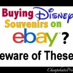 Buying Disney World Souvenirs on Ebay: A Cheapskate Princess Guide