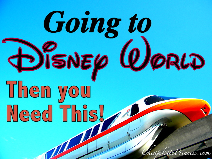 you need this at Disney World