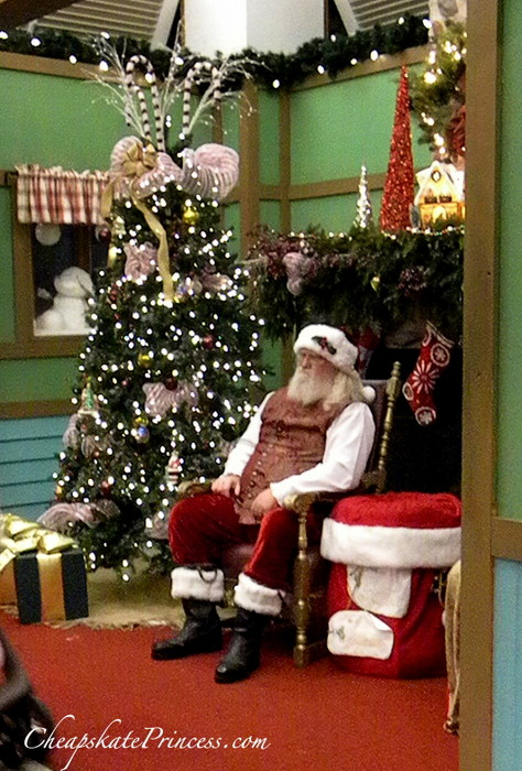 Disney Celebration Pictures with Santa