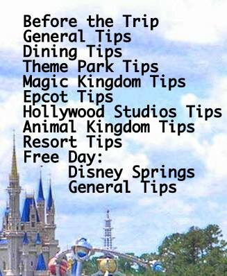 Best Disney Tips