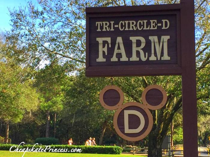 where to find horses at Walt Disney World