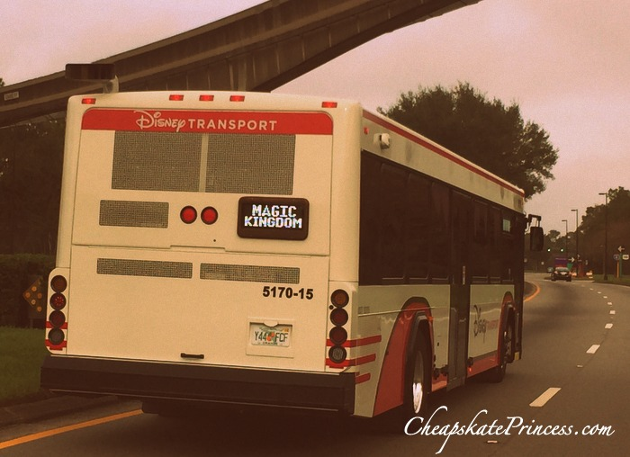Disney World bus guide for beginners