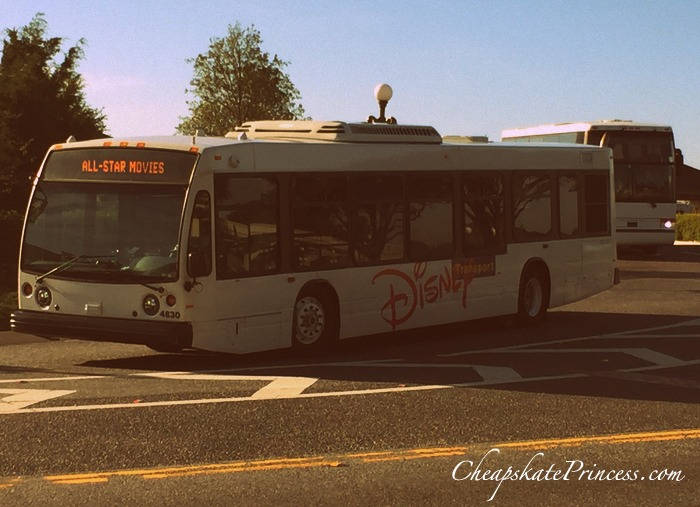 Disney World bus transportation tips