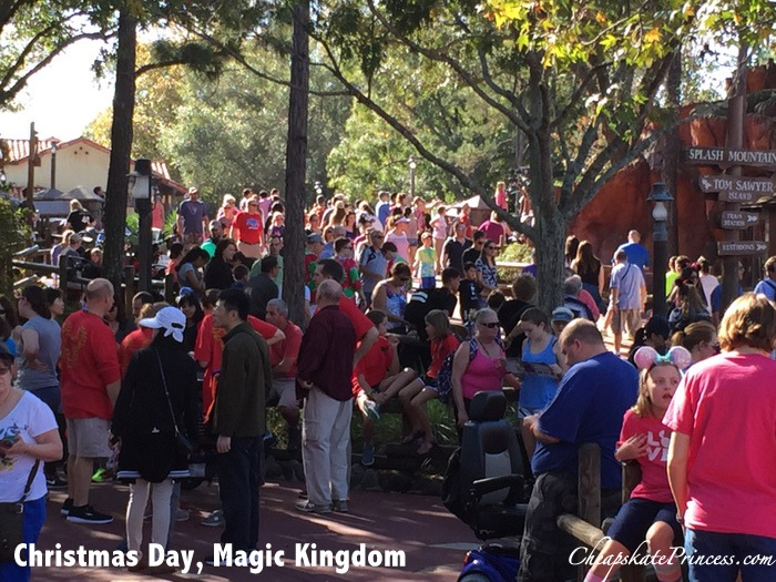 crowd-levels-at-disney-world-for-christmas