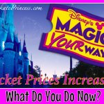 When Disney Ticket Prices Go Up, What Can You Do?