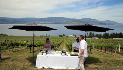 CedarCreek Estate Winery View