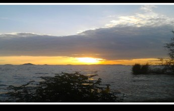 A Cry for Help From Lake Victoria