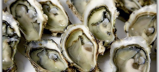 Oysters (Demo)