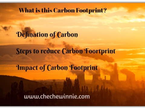 What is this Carbon Footprint?