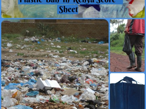 Plastic Ban In Kenya Score Sheet