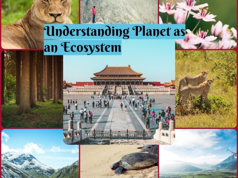 Understanding Planet as an Ecosystem