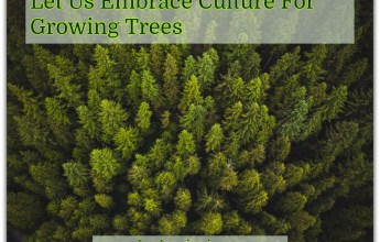 Let Us Embrace Culture For Growing Trees