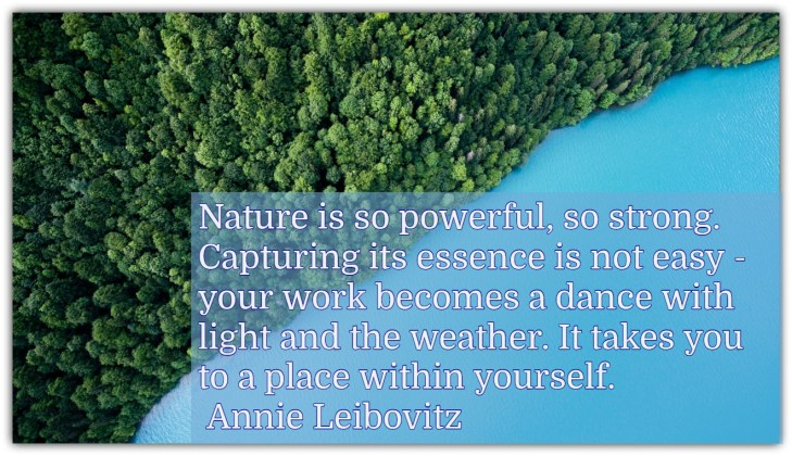 Nature is so powerful, so strong. Capturing its essence is not easy - your work becomes a dance with light and the weather. It takes you to a place within yourself. Annie Leibovitz