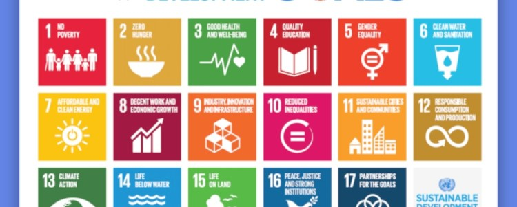 The Sustainable Development Goals (Demo)