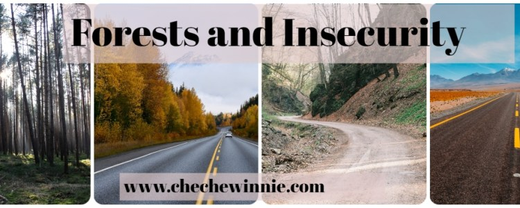 Forests and Insecurity