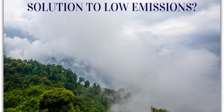 IS CARBON CREDIT TRADING SOLUTION TO LOW EMISSIONS?